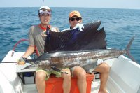 070923sailfish_2