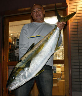 091031yellowtail_2