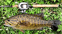 130519smallmouth