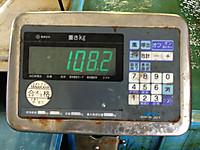 130616kuromaguro108_3